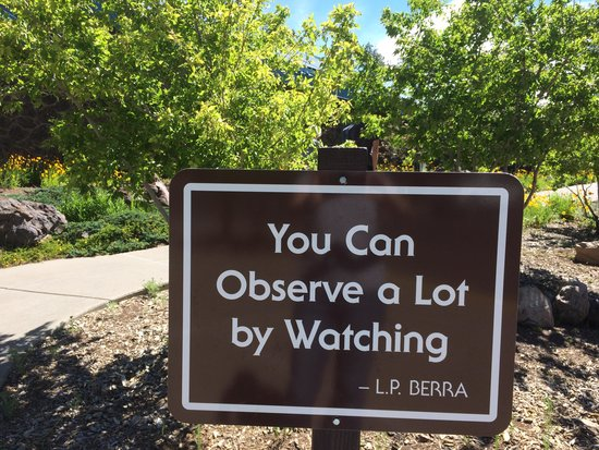Lowell Observatory: Great advice!