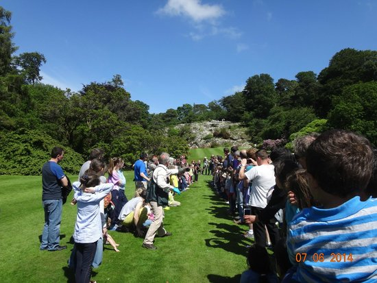 Kilruddery House & Gardens: Falconry Show