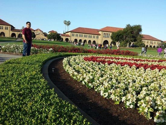 Stanford University: exterior