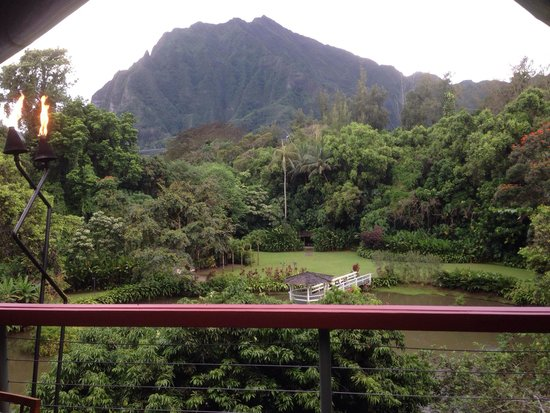 Haleiwa Joe's: Our view!