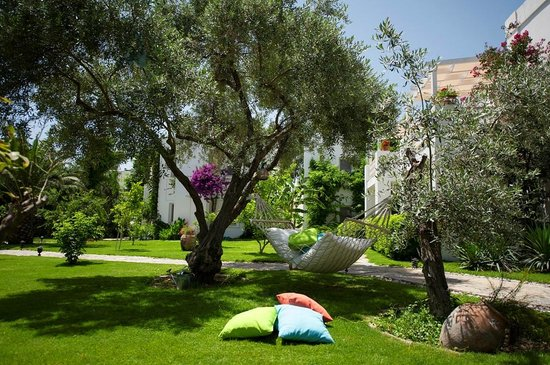 Mavi Suite Turkbuku : Garden