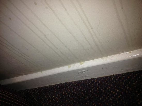 Premier Inn Wirral (Bromborough) Hotel: Urine stain underneath window