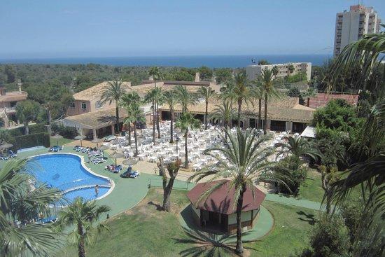 Hyb Eurocalas: Piscina pequeña y terraza