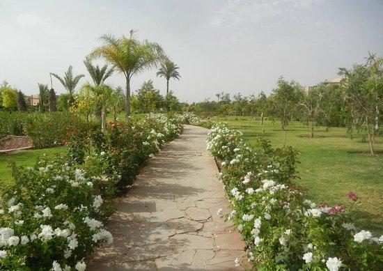 Club Dar Atlas : le jardin