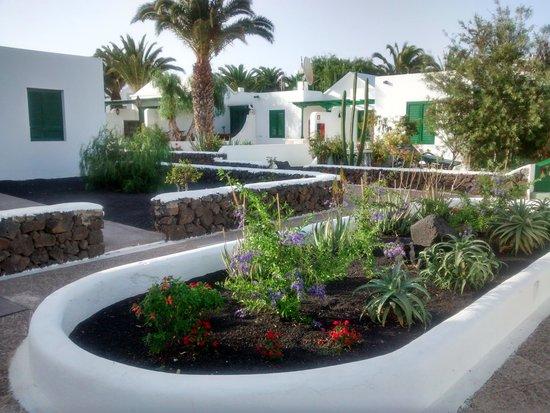 Apartamentos THe Las Gaviotas : Hotel