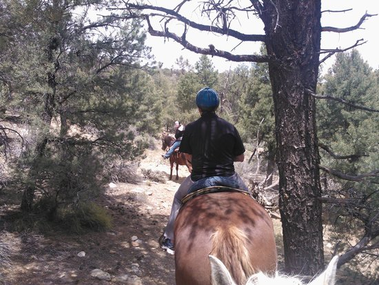 Baldwin Lake Stables: In the valley