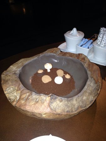 Hotel Teatro Porto: Obrigada Hugo, por esta surpresa, Terra de chocolate, com cogumelos de suspiros, trufas maravilh