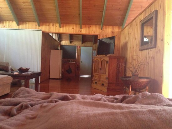 Kondalilla Eco Resort : Kitchen view from bed