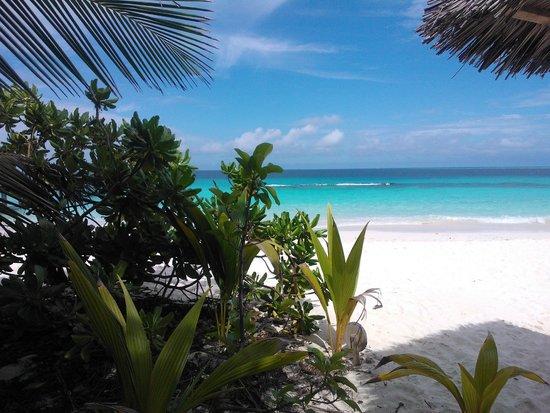 Reethi Beach Resort: Uitzicht vanuit kamer