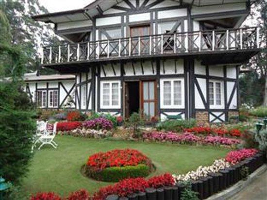 Glendower Hotel: Hotel Garden View