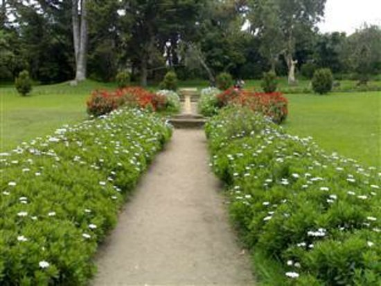 Glendower Hotel: Victoria Park Attractions