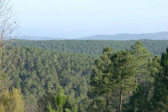 Campsite Le Fontanelle: Panorama