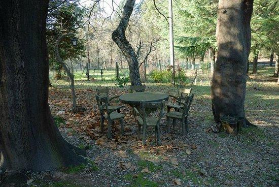 Campsite Le Fontanelle: Tavolo a disposizione