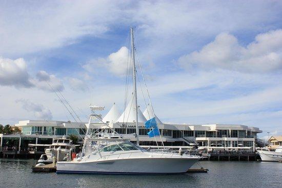 Surfers Paradise River Cruises: Marina Mirage