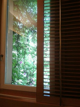 Hotel Raphael - Relais Chateaux: serene green views from room