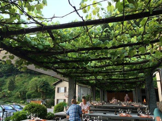 Osteria Ferriroli : View inside the terrase
