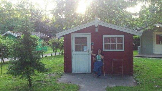 Camping Hostel Amsterdamse Bos: Nuestra cabaña