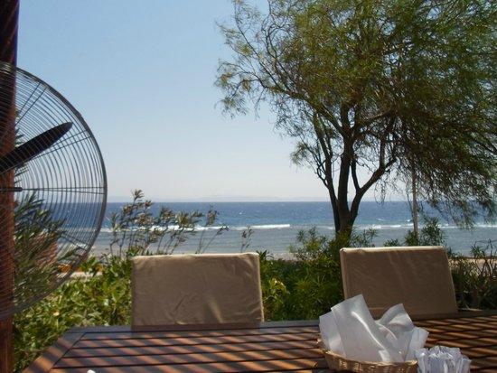 Dahab Paradise : restaurant area