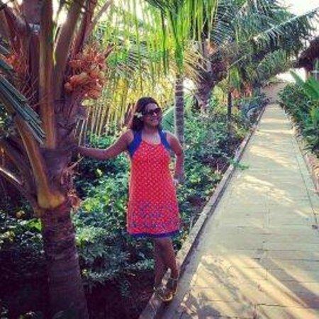 Greenleaf The Resort : Walkways