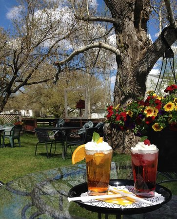 The Thorny Rose Cafe: Kick back with an Italian Soda, old fashioned Ice cream Float or your favorite brewski