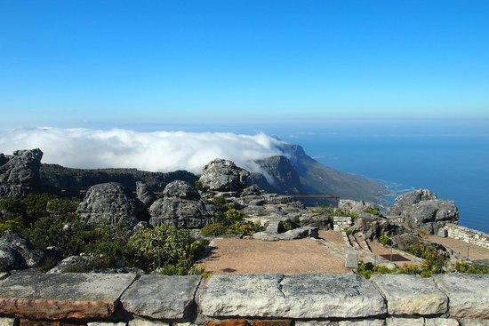 Table Mountain: บนเทเบิลเมาเม่นจ้าา