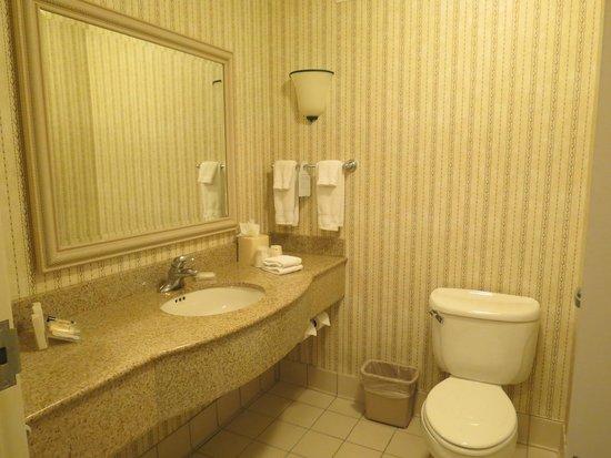 Hilton Garden Inn St. Charles: Well equipped bathroom