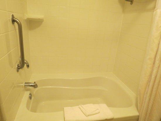 Hilton Garden Inn St. Charles: Nice bathtub/shower