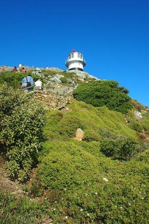 Cape of Good Hope: ทางขึ้นป้อม