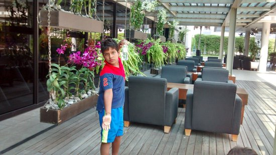 Pan Pacific Singapore: Pool area