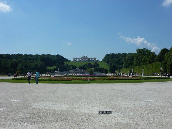 Schloss Schönbrunn: The backyard