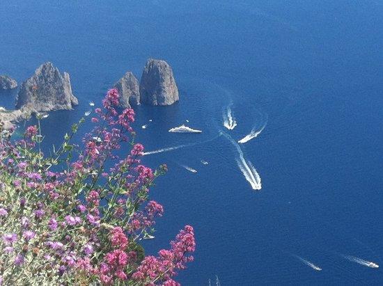 Capone Servizi Marittimi : 3-4 hours on the Island of Capri
