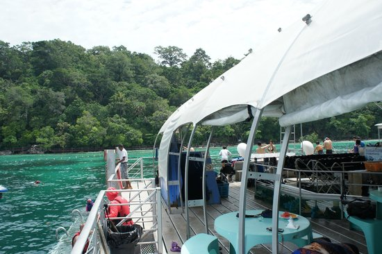 Langkawi Coral: View from the platform to shore.