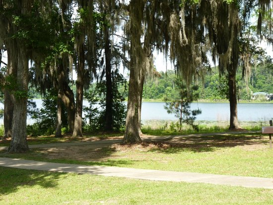 Alfred B. Maclay Gardens State Park : A view from one of the picnic benches