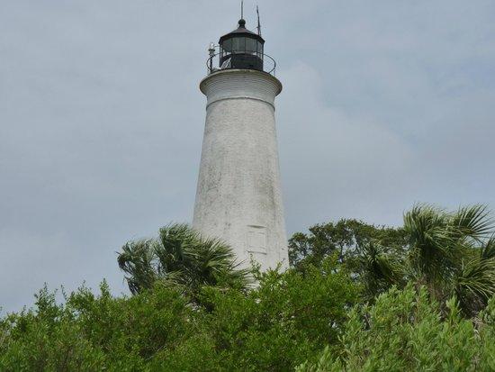 St. Marks Lighthouse : The Lighthouse