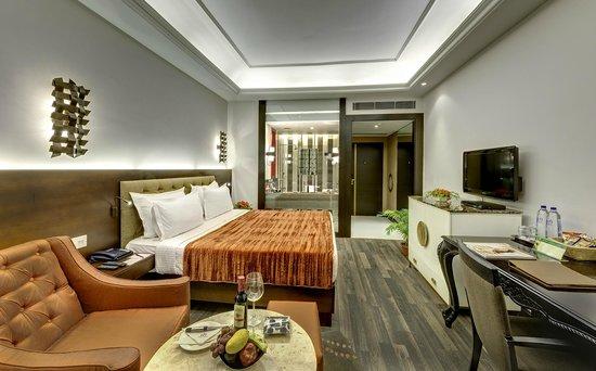 Hotel Hindusthan International Kolkata: Colony Premium Rooms