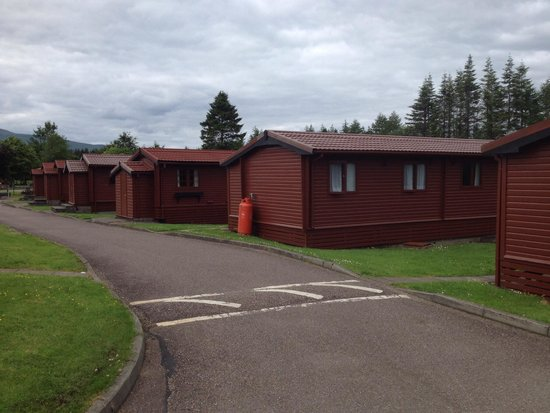 Lochy Holiday Park : Woodbury lodges with veranda looking on camping and lochy river