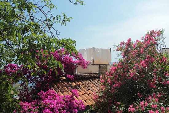 Isoco Guesthouse: Terrazzo solarium
