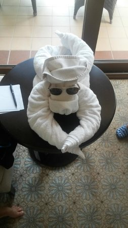 Hilton Ras Al Khaimah Resort & Spa: dog towel in room by maid