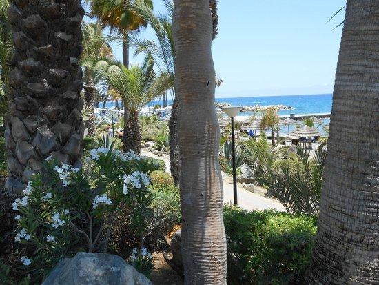 Amathus Beach Hotel Limassol: Part of the beach path outside the Amathus