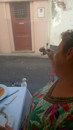 Restaurante a Sardinha : seagull :)