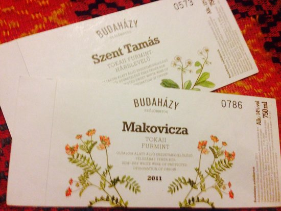 Медье Боршод-Абауй-Земплен, Венгрия: Budahazy Winery, Mad