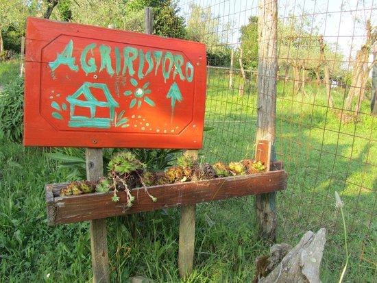 Agriturismo Cisogna : cartelli
