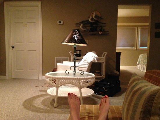 Alpine Hilltop Haus Bed and Breakfast : Living Room looking at bedroom door