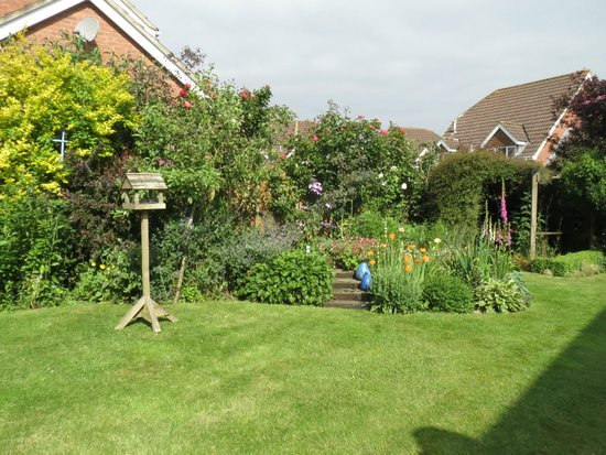 Pearfield Bed and Breakfast: The garden