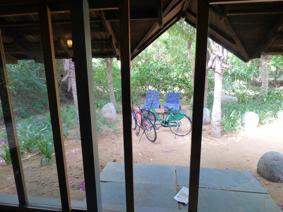The Dune Eco Village & Spa : View from room with cycles.