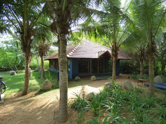 The Dune Eco Village & Spa: Our room