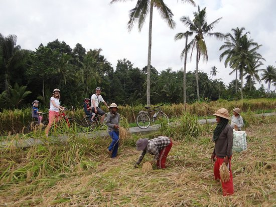 Bali Breeze Tours: biking around Ubud