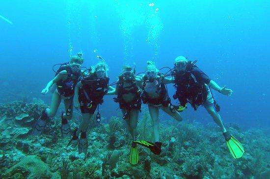 Scuba School And Family Dive Center: Excellent Diving with Scuba School Belize Ambergris Caye