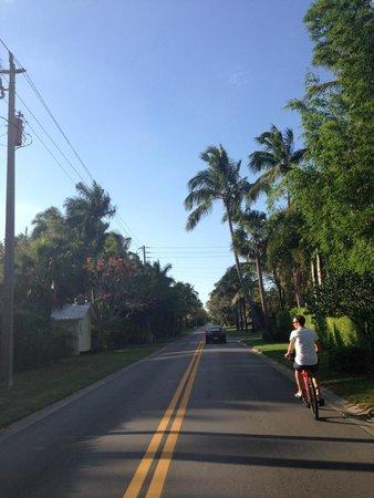Lemon Tree Inn : Umgebung / Weg zum Strand