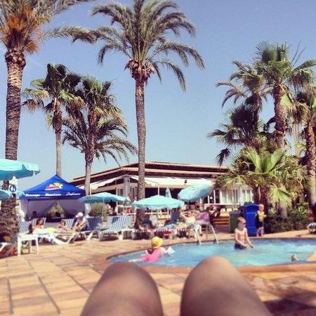Sirenis Hotel Club Aura : Pool